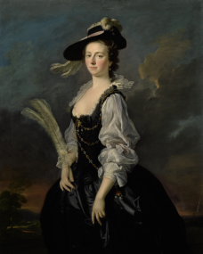 allan-ramsay---portrait-of-jane-hale,-mrs.-madan,-three-quarter-length.png